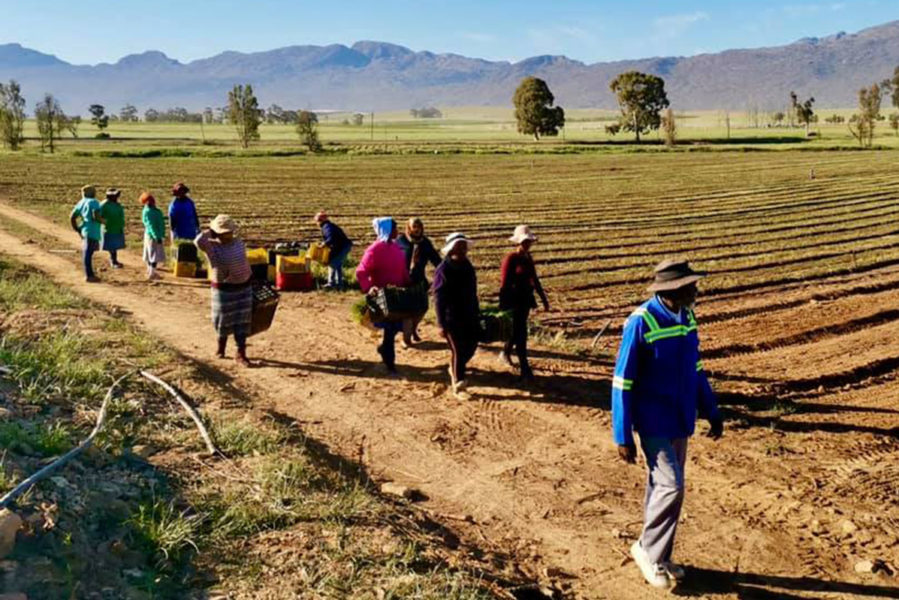 Innovative Private Land Reform Initiative Is Going National